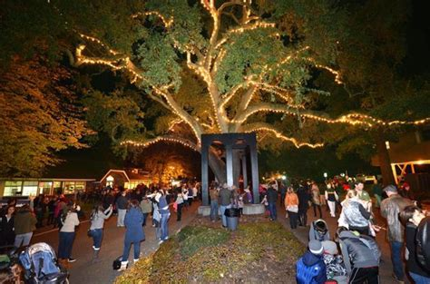 danville tree lighting 2017 2017 danville ca fallfest formerly the fall crafts