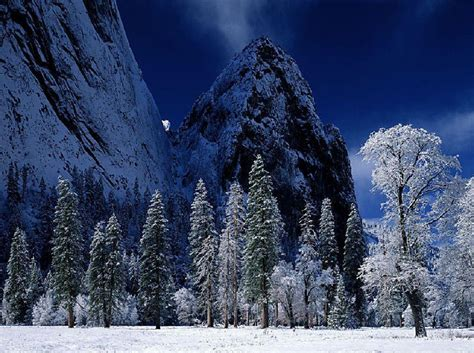 Winter Screensavers And Wallpapers  Wallpaper Cave