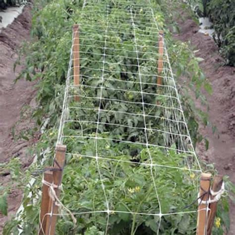 garden trellis netting buy trellis netting from garden trellis netting co