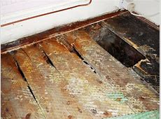 Dry Rot Protectahome Specialist Dry Rot Surveys and