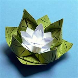 Geldfrosch Basteln Anleitung : origami pflanzen falten seerose ~ Lizthompson.info Haus und Dekorationen