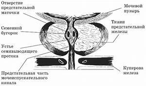 Геннадий малахов лечение псориаза