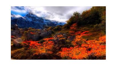 Autumn Fall Desktop Scenes Scene Forest Nature