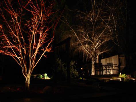 outdoor lighting for trees low voltage led low voltage landscape lighting kits 2017