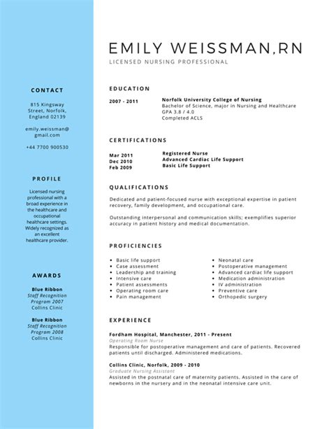 Professional Nursing Resume Writers by Professional Licensed Resume Canva Finances