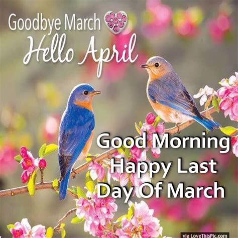 Good Morning Happy Last Day Of March Pictures, Photos, and ...