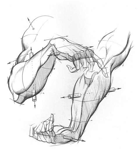 human figure drawing  drawing books english   gb