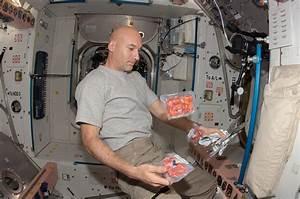 European Space Agency astronaut Luca Parmitano | NASA