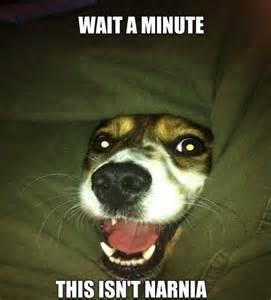 Funny Memes Wait