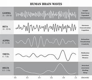 Mensch Brain Waves Diagram  Diagramm  Illustration Vektor