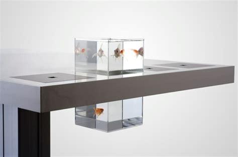 aquarium bureau aquarium design le confort pour vous et vos petits poissons