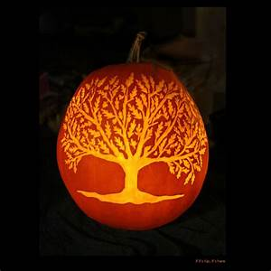 The, 2014, This, Old, House, Pumpkin, Carving, Contest, Winners, All, 30