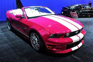 Pink Mustang 5 - The Mustang Source