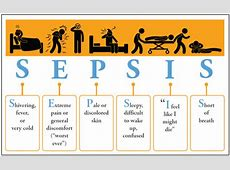 Sepsis Pediatrics Clerkship The University of Chicago