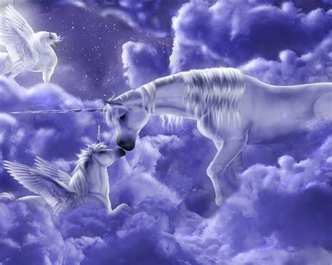 beautiful fantasy hd wallpaper  unicorns  clouds