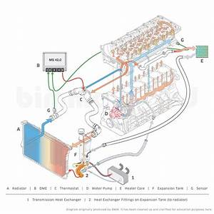 Bmw E46 Coolant System Diagram