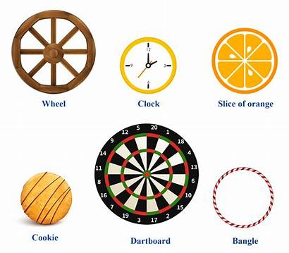 Examples Diameter Objects Cuemath Circle Circular Fraction