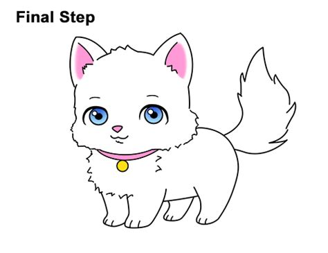 How To Draw A Cat (cartoon