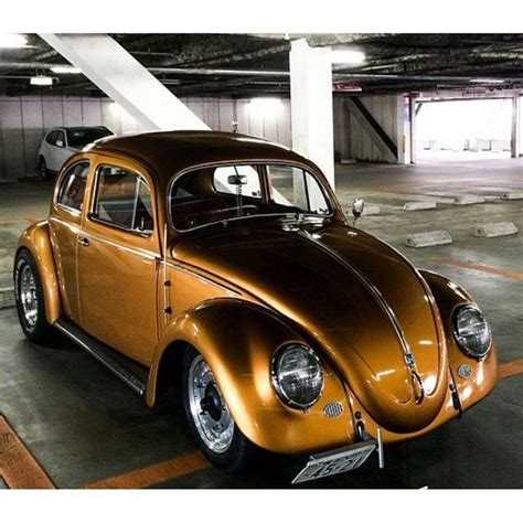gold volkswagen beetle 61 best vw images on pinterest vw beetles car and vw bugs