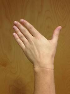 Anatomy of the Wrist | Gymnastics Injuries