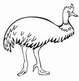Coloring Emu Printable Patrick sketch template