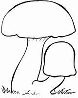 Fungus Clipart Yeast Fungo 20clipart Coloring Pages Template Clipground sketch template