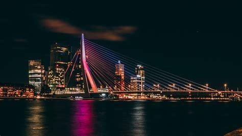 erasmus bridge  night rotterdam netherlands