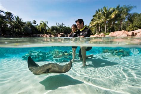 Discovery Cove Orlando Tickets by Discount For Florida Residents At Discovery Cove