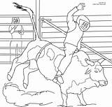 Bull Coloring Pages Riding Bucking Printable Rodeo Bulls Cowboy Pbr Ferdinand Sheets Drawing Miniature Bar Getdrawings Books Pdf Coloringhome Again sketch template