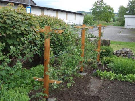 himbeerspalier selber bauen die obi selbstbauanleitungen garden yard ideas garden yard ideas garden trellis