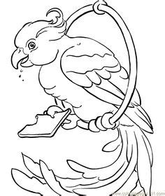 birds and giraffes coloring pages 1000 images about zoo printables coloring pages 5947