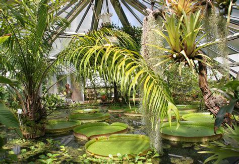 Botanischer Garten Zürich Oeffnungszeiten by Garten Erstaunlich Botanischer Garten Halle 246 Ffnungszeiten