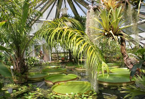 Botanischer Garten  Halle  Kulturfalter Halle