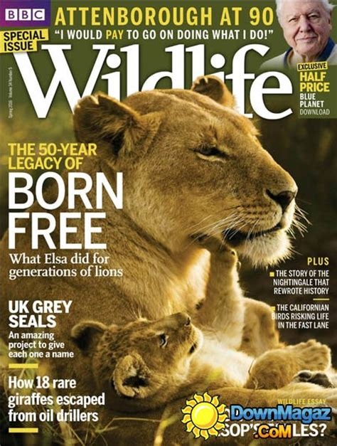 bbc wildlife spring    magazines