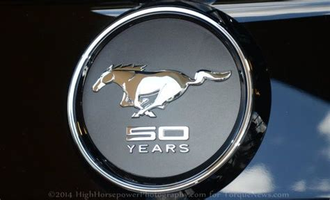 year limited edition  ford mustang