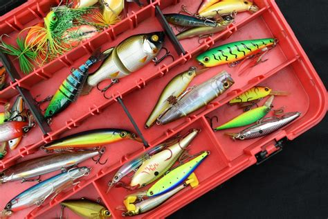 common types  fishing lures