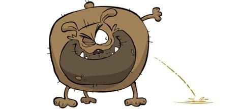 pisse canapé dissuader un chien d 39 uriner remèdes de grand mère