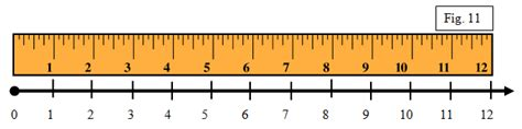 11 Inch Ruler Pictures To Pin On Pinterest Pinsdaddy