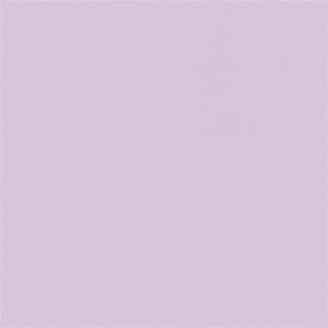 Tapete Vlies Rasch Uni Flieder Wallpaper Color 515664
