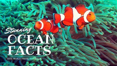 ocean facts  kids atlantic ocean pacific ocean