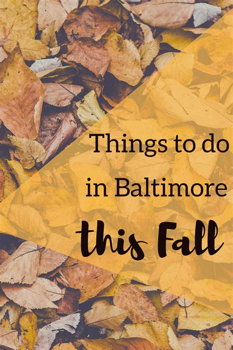 things to do in fall things to do in baltimore in the fall hirschfeld apartments