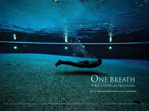 freediving wallpaper wallpapersafari