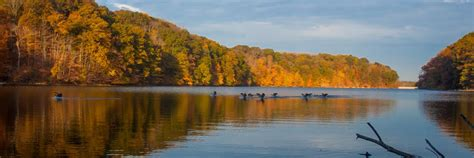 Boat Parts Bloomington Indiana by Bloomington Lakes And Wildlife Fishing Boating Swimming
