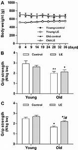 Le Supplementation Increases Forelimb Grip Strength In