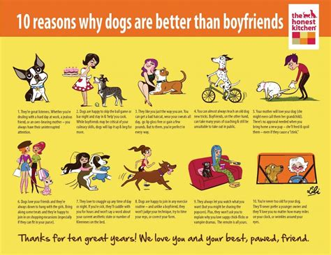 dogs boyfriends better than why reasons awesome dog boyfriend quotes funny puppy clicca meglio chin lili pawcurious vs doggie drawings