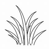Grass Coloring Pages Clipart Drawing Plants Wild Outline Tall Line Sheet Colorluna Clip Template Colouring Flower Templates Clipartmag Printable Sketch sketch template