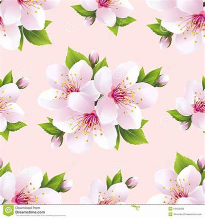 Sakura Flowers Seamless Pattern Purple Background