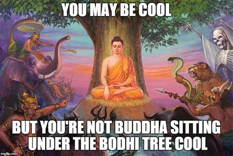 Buddha Memes - cool buddha imgflip