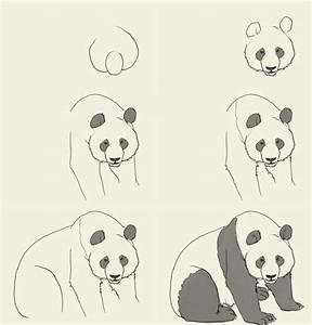 Best 25+ How to draw panda ideas on Pinterest | Panda ...