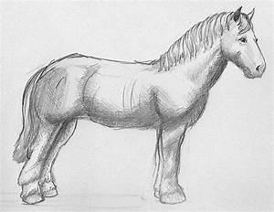 Zeichnen Lernen Mit Bleistift : pferde zeichnen mit bleistift ausmalbilder pferde pinterest zeichnen mit bleistift pferde ~ Frokenaadalensverden.com Haus und Dekorationen